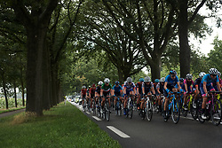 The peloton head along a tree-lined street at Boels Ladies Tour 2019 - Stage 2, a 113.7 km road race starting and finishing in Gennep, Netherlands on September 5, 2019. Photo by Sean Robinson/velofocus.com