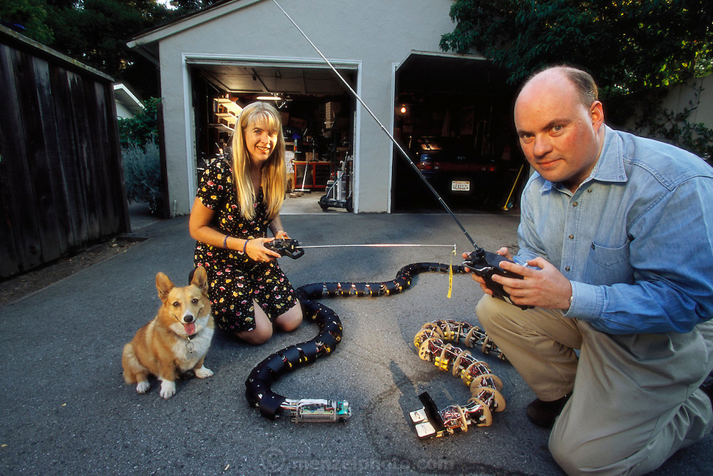In Palo Alto, CA Gavin Miller and his wife Nancy test his robotic snake in the driveway of their home. Miller builds the snakes in his garage.