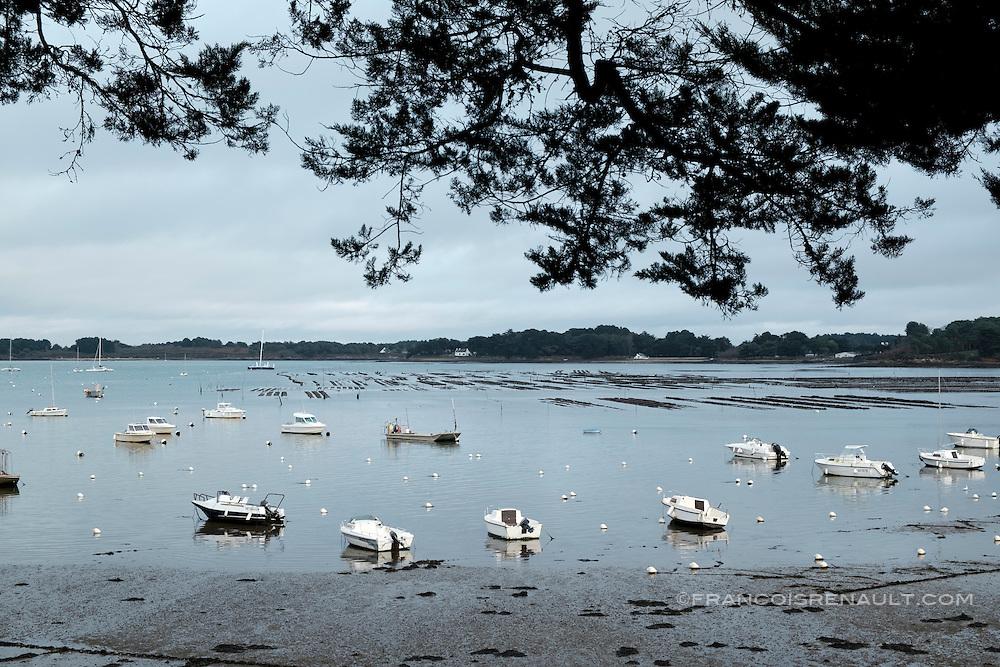 A marée basse, bateaux dans le port du Logéo, Sarzeau. Golfe du Morbihan, Bretagne, France.