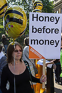 1 Jul.2014 - Protesters urge Cameroon to uphold Bee pesticide ban.