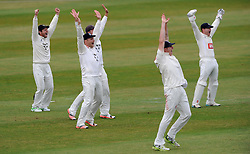 The Sussex slip cordon unsuccessfully appeal for the LBW f Somerset's James Hildreth. - Photo mandatory by-line: Harry Trump/JMP - Mobile: 07966 386802 - 06/07/15 - SPORT - CRICKET - LVCC - County Championship Division One - Somerset v Sussex- Day Two - The County Ground, Taunton, England.
