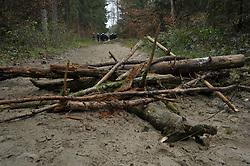 Im Vorfeld des Castortransports kommt es im Waldgebiet Göhrde im Wendland immer wieder zu Straßen- und Schienenblockaden.<br /> <br /> Ort: Leitstade<br /> Copyright: Christina Palitzsch<br /> Quelle: PubliXviewinG