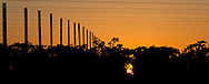 Vineyard Sunrise 2