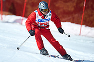 """Schladming, Austria - 2017 March 21: Francois Dewisme from Monaco (223) competes in Alpine Skiing Competition while Special Olympics World Winter Games Austria 2017 on the """"Sepp-Walcher-Downhill"""" (Slope 32) near the """"Tauernalm"""" in Rohrmoos on March 21, 2017 in Schladming, Austria.<br /> <br /> Mandatory credit:<br /> Photo by © Adam Nurkiewicz / Mediasport<br /> <br /> Adam Nurkiewicz declares that he has no rights to the image of people at the photographs of his authorship.<br /> <br /> Picture also available in RAW (NEF) or TIFF format on special request.<br /> <br /> Any editorial, commercial or promotional use requires written permission from the author of image.<br /> <br /> Image can be used in the press when the method of use and the signature does not hurt people on the picture."""