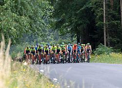 09.07.2019, Frohnleiten, AUT, Ö-Tour, Österreich Radrundfahrt, 3. Etappe, von Kirchschlag nach Frohnleiten (176,2 km), im Bild das Peleton in der Buckligen Welt, Niederösterreich // the peleton in the Buckligen Welt Lower Austria during 3rd stage from Kirchschlag to Frohnleiten (176,2 km) of the 2019 Tour of Austria. Frohnleiten, Austria on 2019/07/09. EXPA Pictures © 2019, PhotoCredit: EXPA/ Reinhard Eisenbauer