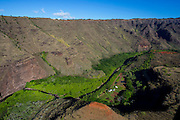 Farm, Waimea Canyon, Kauai, Hawaii
