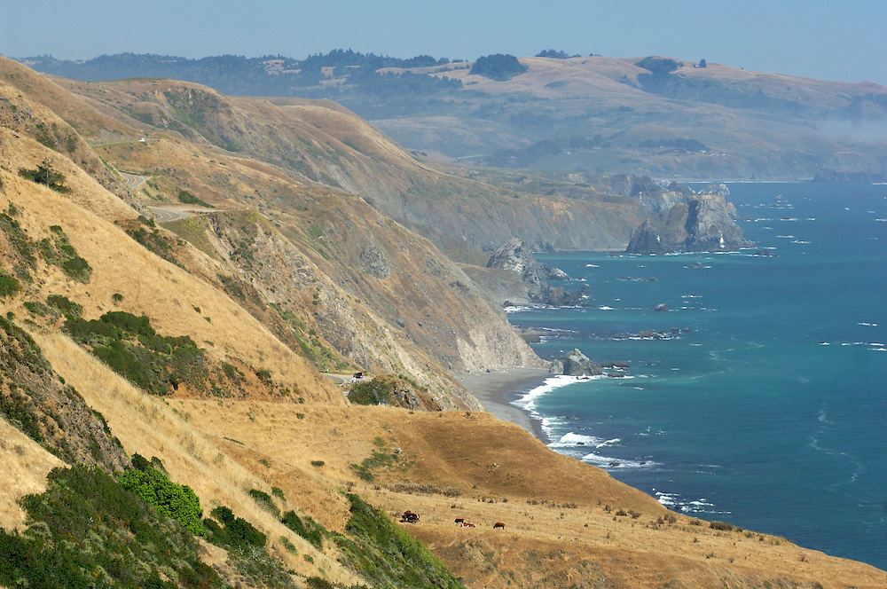 Coast along Highway 1 near Jenner, California, United States of America