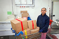 Portrait of male worker with shopping cart in store