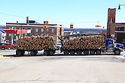 A big part of the UP economy is the pulpwood industry. Here is another huge load of wood moving down highway US-2.