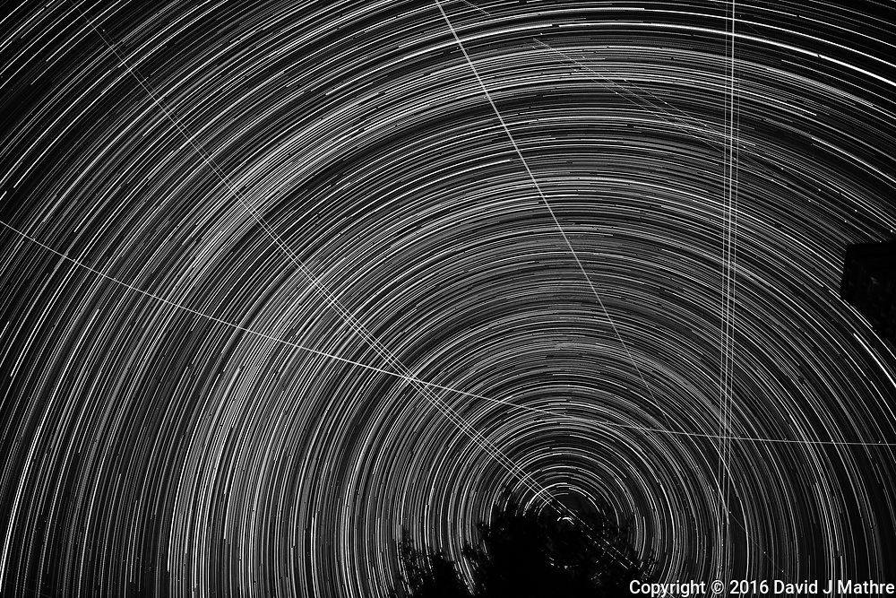 Star and jet trails looking north from my deck. Composite of 368 images taken with a Nikon D3x camera and 24 mm f/1.4 lens (ISO 100, 24 mm, f/2, 59 sec). Raw images processed with Capture One Pro, and the composite created using Photoshop CC (scripts, statistics, maximum), followed by Silver Efex Pro to convert the image to B&W.