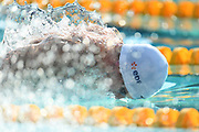 Maxime Grousset (FRA) competes on Men's 50 m Butterfly during the French Open 2018, at Aquatic Center Odyssée in Chartres, France on July 7th to 8th, 2018 - Photo Stephane Kempinaire / KMSP / ProSportsImages / DPPI