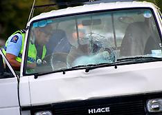 Te Puke-Hitchhiker seriously injured, hit by van