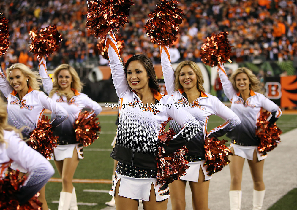 The Cincinnati Bengals cheerleaders wave their pom poms as they come onto the field for the 2015 week 10 regular season NFL football game against the Houston Texans on Monday, Nov. 16, 2015 in Cincinnati. The Texans won the game 10-6. (©Paul Anthony Spinelli)