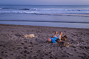 A man rests on the sand with his dogs at Kayu Putih beach in Canggu.