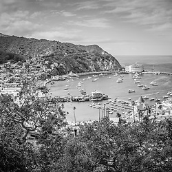 Avalon California high resolution photo in black and white with Avalon Bay, Catalina Casino, Catalina Pier, and city of Avalon.