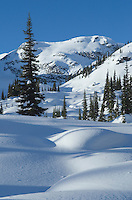 Marriott Basin in winter, Coast Mountains British Columbia