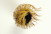 abstract view of an old Japanese green tea brush