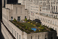 New York. elevated view. garden on the rootops of the Rockfeller center  on fifth avenue / jardins suspendus sur les toits du  Rockfeller center sur la cinqieme avenue  New York