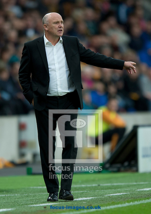 Hull City manager Mike Phelan instructs his players during the Premier League match at the KCOM Stadium, Hull<br /> Picture by Russell Hart/Focus Images Ltd 07791 688 420<br /> 17/09/2016