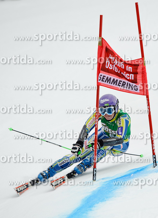 28.12.2010, Panoramapiste, Semmering, AUT, FIS World Cup Ski Alpin, Ladies, Giant Slalom, Bild zeigt MAZE Tina, EXPA Pictures © 2010, PhotoCredit: EXPA/ S. Zangrando