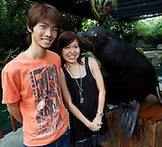 Singapore Zoo. Vistors posing with the seals.