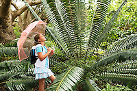 Girl Looking at Large Fern