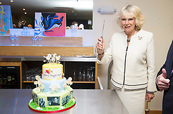 In the image - The Duchess cutting the birthday cake.<br /> HRH The Duchess of Cornwall, Patron of Helen & Douglas House Hospice visits Douglas House to celebrate their 10th Anniversary. The Hospice cares for children and young adults with life shortening conditions, United Kingdom, Friday, 9th May 2014. Picture by i-Images