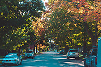 Traditional Neighborhood streets (2md Street) in Traverse City, Michigan on October 13, 2018 (Gary L Howe)