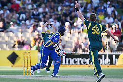 © Licensed to London News Pictures. 08/03/2012. Adelaide Oval, Australia. Brett lee celebrates the wicket of Kumar Sangakkara, after Sangakkara edges it to Shane Watson during the One Day International cricket match final between Australia Vs Sri Lanka. Photo credit : Asanka Brendon Ratnayake/LNP