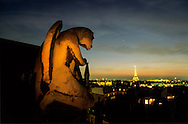 France. Paris.  elevated view on Paris. 7th district.   The gargoyles of. view Saint Clotilde chuch . the eiffel tower
