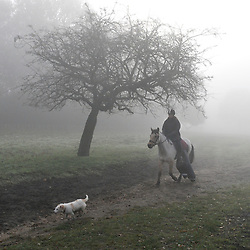 ©London News pictures...16/11/2010. Billy the dog leads Toffee the horse and bKerry the rider through the fog. Walkers enjoy the fog in Richmond Park in London today (Tues). Photo credit should read Stephen Simpson/London News Pictures.