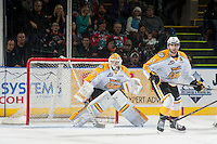 KELOWNA, CANADA - OCTOBER 25: Jordan Papirny #33 of Brandon Wheat Kings defends the net against the Kelowna Rockets on October 25, 2014 at Prospera Place in Kelowna, British Columbia, Canada.  (Photo by Marissa Baecker/Shoot the Breeze)  *** Local Caption *** Jordan Papirny;