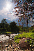 A river at midday