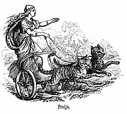 Freya or Frigg goddess of love in Scandinavian mythology, wife of Wotan or Odin, driving her chariot pulled by cats. Friday is named for her. Engraving