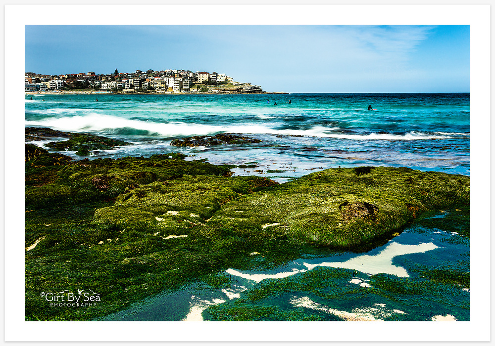 A very low tide exposes a green carpet at the southern end of Bondi Beach [Bondi, NSW, Australia]<br /> <br /> To purchase please email orders@girtbyseaphotography.com quoting the image number PB202132, and your preferred print size. You will receive a quick reply recommending print media options to best suit your chosen image, plus an obligation-free quotation. Current standard size prices are published on the Pricing page.