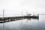 Bodega Bay Photos