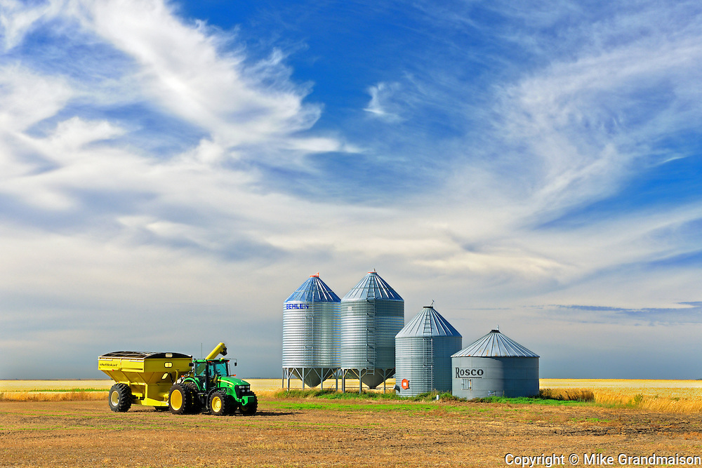 Grain bins and cart in lentil field <br /> Lang<br /> Saskatchewan<br /> Canada