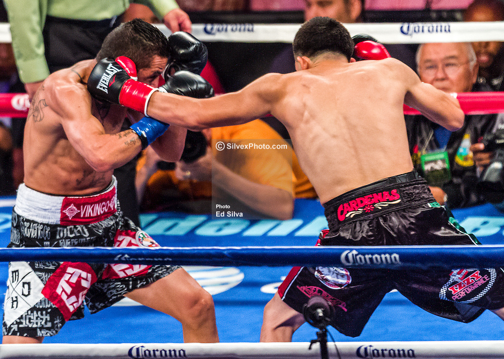 CARSON, California/USA (Saturday, Aug 24 2013) - Leo Santa Cruz (trunks w/ green stripes) and Victor Terrazas (trunks w/ white stripes) trade punches during their bout at the StubHub Center in Carson California. Leo Santa Cruz (25-0-1, 15 KOs) won by TKO in the 3rd round after Victor Terrazas (37-3-1, 21 KOs) hit the canvas and complained his right eye was shut. Referee Lou Moret called it off at 2:09 of the 3rd round and Leo Santa Cruz claimed the WBC junior featherweight title  by TKO at The StubHub Center in Carson, CA.  PHOTO © Eduardo E. Silva/SILVEXPHOTO.COM.
