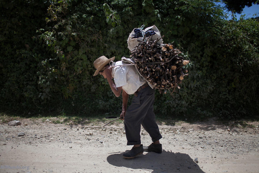 A local Kakchiquel Mayan man carries firewood on his back using a traditional mecapal. San Juan Comalapa, Chimaltenango, Guatemala. July 18, 2014.