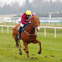 Red Anchor and A Thornton winning the 1.30 race