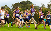 Wexford Athletics