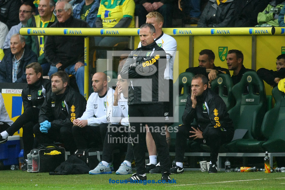 Norwich Manager Neil Adams during the Sky Bet Championship match at Carrow Road, Norwich<br /> Picture by Paul Chesterton/Focus Images Ltd +44 7904 640267<br /> 04/10/2014