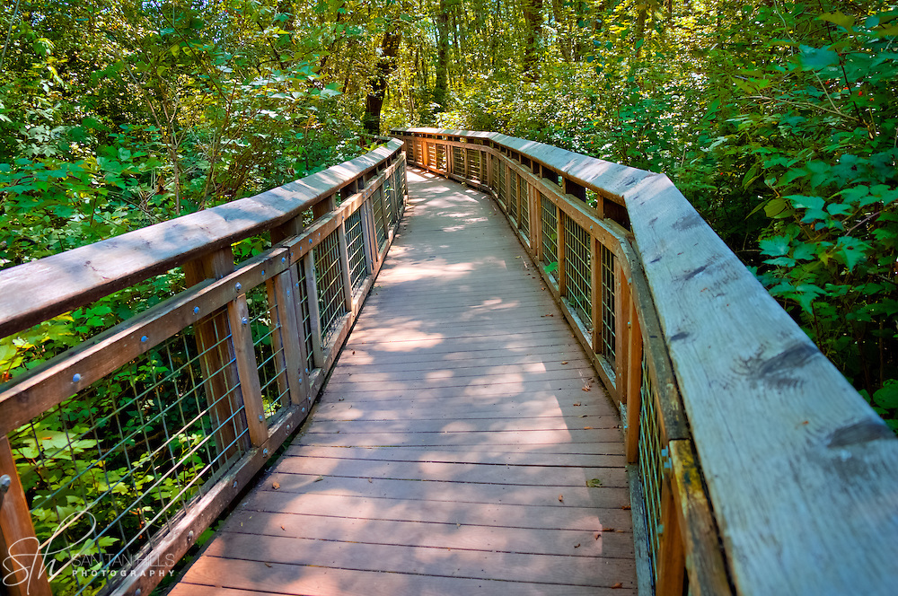 walkway at Hylebos Creek Wetlands - Federal Way, WA