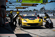 March 15-17, 2018: Mobil 1 Sebring 12 hour. 3 Corvette Racing, Corvette C7.R, Jan Magnussen, Antonio Garcia, Mike Rockenfeller pitstop