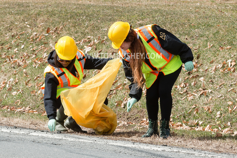 New Paltz, New York - Members of the Sigma Delta Tau sorority from SUNY New Paltz pick up litter on Route 208 on on April 11, 2015. The sorority cleans up the roadside as part of the New York State Department of Transporatation Adopt-A-Highway Program.