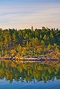 A heavily wooded island on the coast of Sweden at dawn amid the islands of the Stockholm Archipelago on the Baltic Sea.