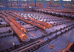 Log Rolling Machinery, Paper Mill