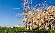 Doug + Mike Starn on the Roof: Big Bambú, Iris and B. Gerald Cantor Roof Garden, Metropolitan Museum of Art, Manhattan, New York City, New York