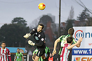 James Shea (Goalkeeper) of AFC Wimbledon shows his back to full fitness during the Sky Bet League 2 match between Exeter City and AFC Wimbledon at St James' Park, Exeter, England on 28 December 2015. Photo by Stuart Butcher.
