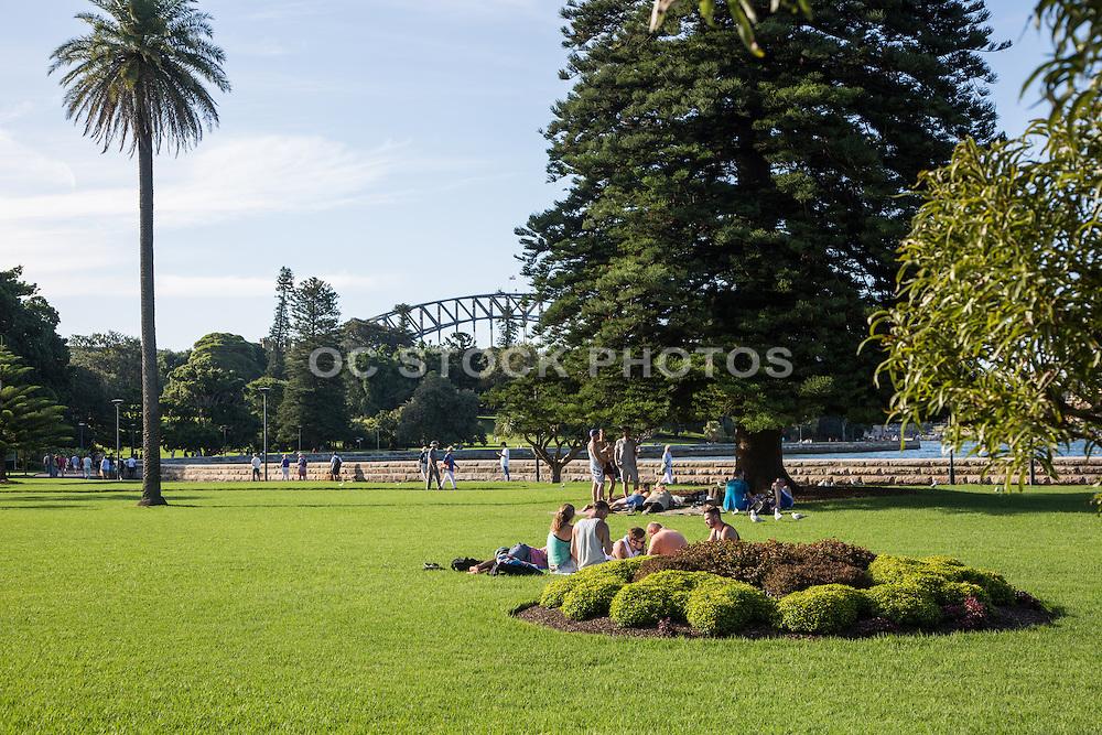 Royal Botanic Gardens at Sydney Harbour Australia